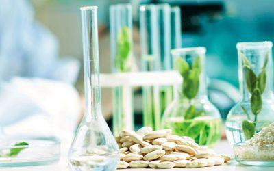 Diseño y Desarrollo de Productos Alimenticios junto con el Consumidor